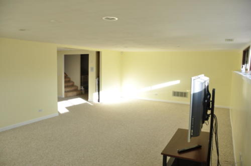 basement10 (1) (1) (1)