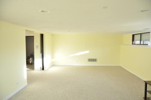 basement5 (1) (1) (1)